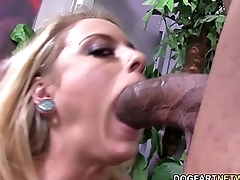 Cameron'_s pussy gets fucked by a huge black dick